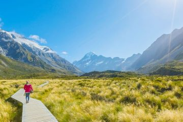 Someone walking on a boardwalk in New Zealand.