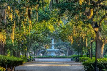 Moss-draped oaks overshadow a beautiful fountain.