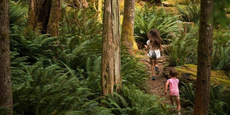 Two young girls scamper through a mossy forest.