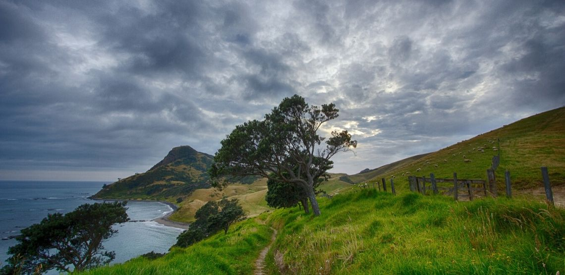 Landscape in New Zealand.
