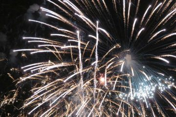 Fireworks against a night sky.