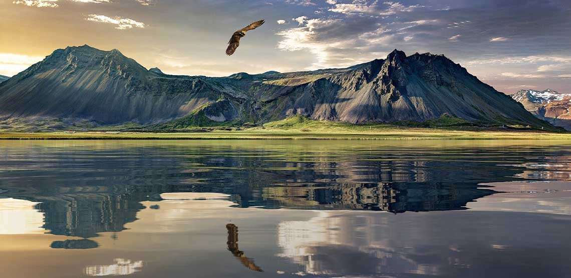 A lake by a mountain with a bird flying over it.
