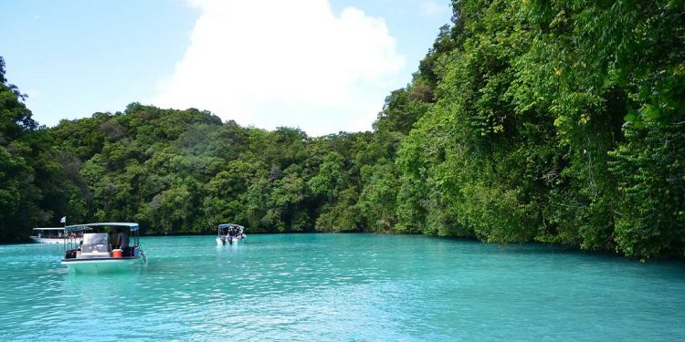 Turquoise blue water surrounded by islands covered in trees.